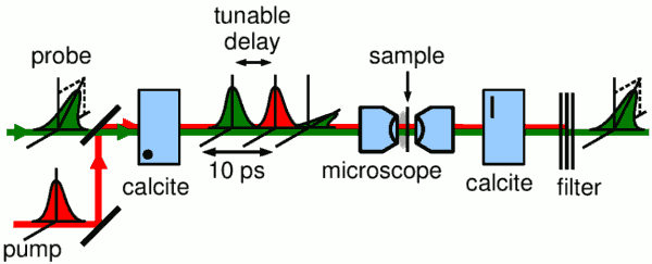 a common-path interferometer for pump-probe spectroscopy