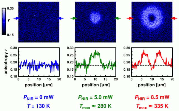 local heating visualized by changes in fluorescence anisotropy
